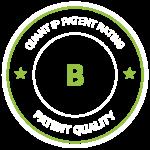quant ip patent rating B